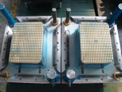 two cavity fruit crate mould
