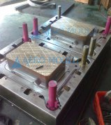 two cavity fruit crate mold